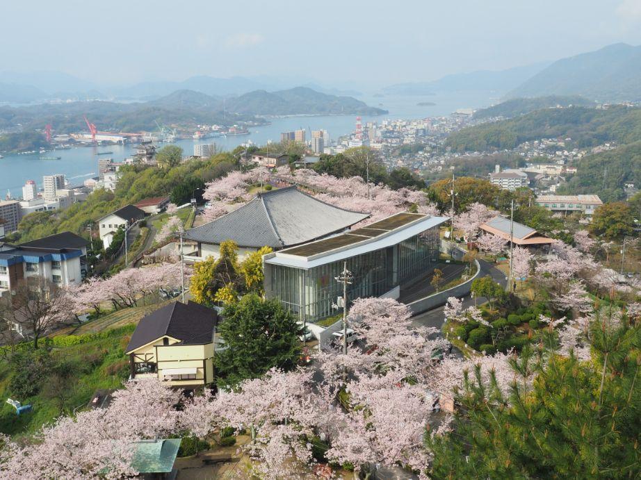 尾道 千光寺公園の桜